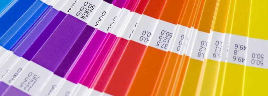 colourful pantone swatch